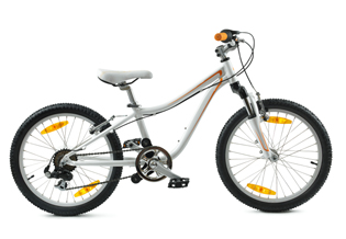 Children Bicycle - Bicycle Insurance for the everyday
